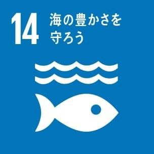 14.「海洋資源」~海の豊かさを守ろう~